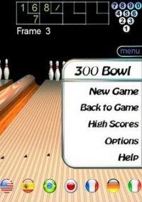 Обложка 300 Bowl