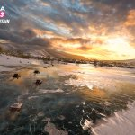 Скриншот Forza Horizon 3 – Изображение 45