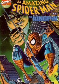 The Amazing Spider-Man vs. The Kingpin – фото обложки игры