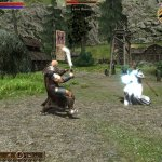 Скриншот Two Worlds (2007) – Изображение 39