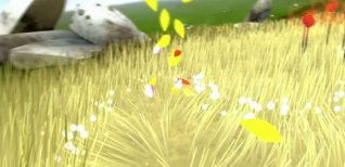 Flower. Видео #1