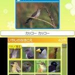 Скриншот Hana to Ikimo no Rittai Zukan – Изображение 4