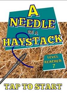 A-Needle-In-A-Haystack
