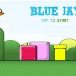 Скриншот Super Blue Jay World – Изображение 1