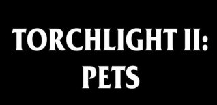 Torchlight 2. Видео #3