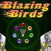 Обложка Blazing Birds