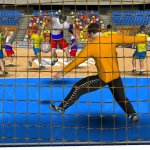 Скриншот Handball Simulator: European Tournament 2010 – Изображение 7