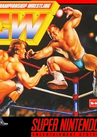 Обложка Natsume Championship Wrestling