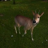 Скриншот Deer Hunter 2005
