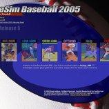 Скриншот PureSim Baseball 2005