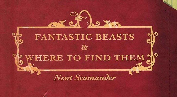 Ответвление «Гарри Поттера» станет основой для трилогии фильмов - Изображение 1