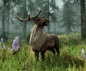 Гифка дня: попадание прямо вяблочко вThe Elder Scrolls 5: Skyrim