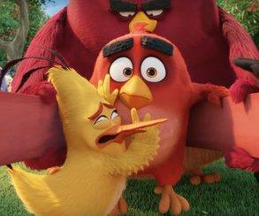В новом трейлере фильма по Angry Birds птицы наконец-то полетели