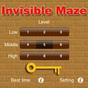 Invisible Maze