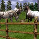 Скриншот Wildlife Park 2: Horses – Изображение 3