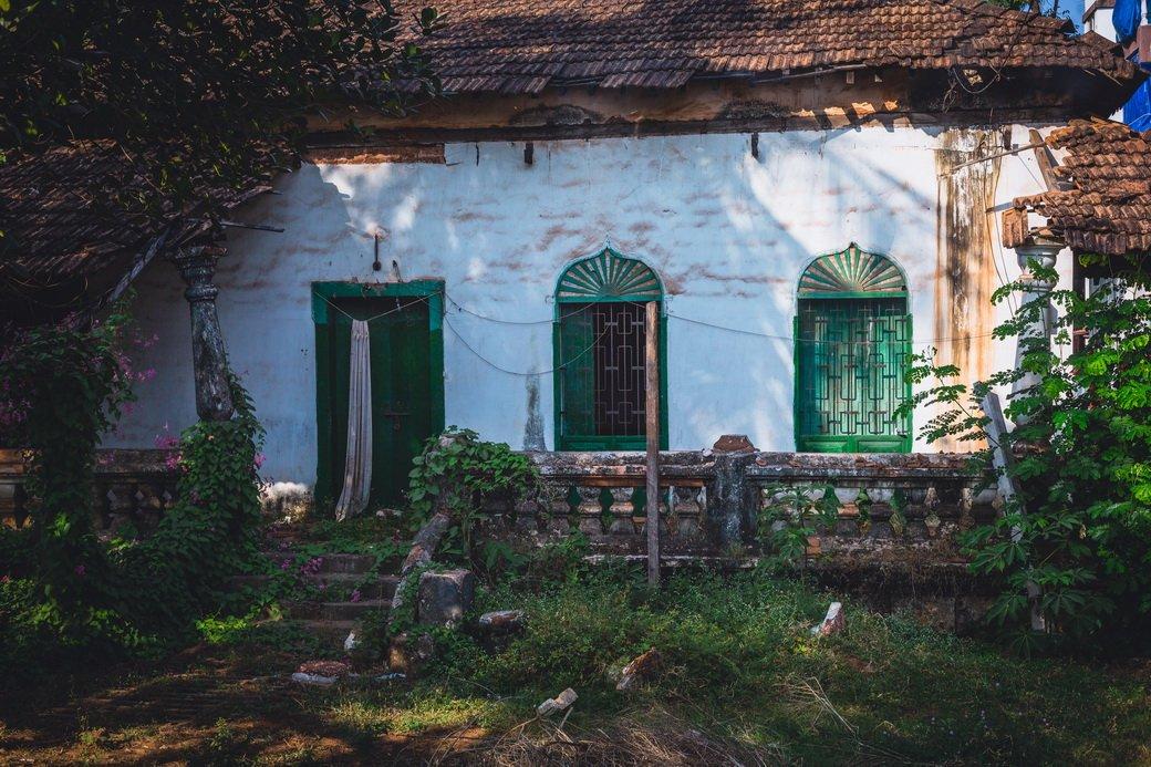 Индия глазами Трофимова   Канобу - Изображение 6390
