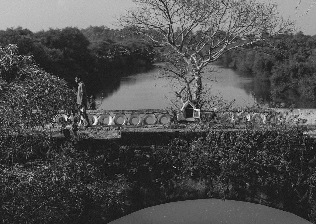 Индия глазами Трофимова   Канобу - Изображение 6388