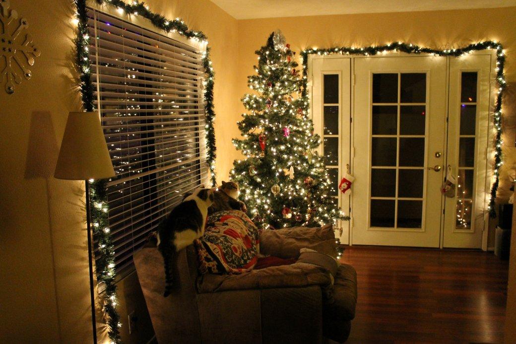 Как зарядиться новогодним настроением | Канобу - Изображение 1